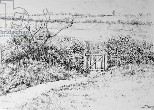 Cottage Gate and View Beyond,2015, (pen and ink)