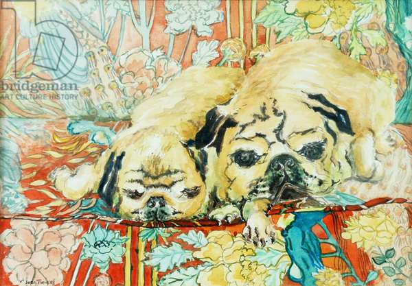 Pugs on a Chinese Print Sofa,2000,(watercolour)