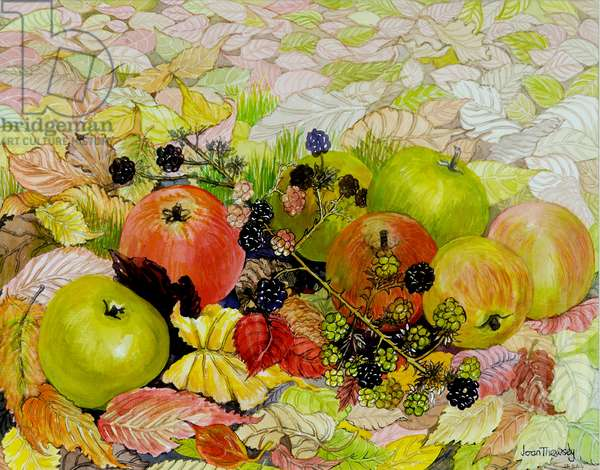 Apples and Blackberries on Autumn Leaves,2010,watercolour