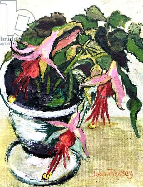 Fuchsias, (acrylic)