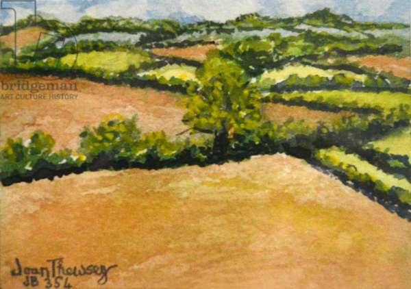 Little Suffolk Landscape,2000 (watercolour)