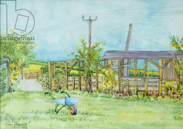 Cottage Garden with Wheelbarrow, 2011, pencil and watercolour