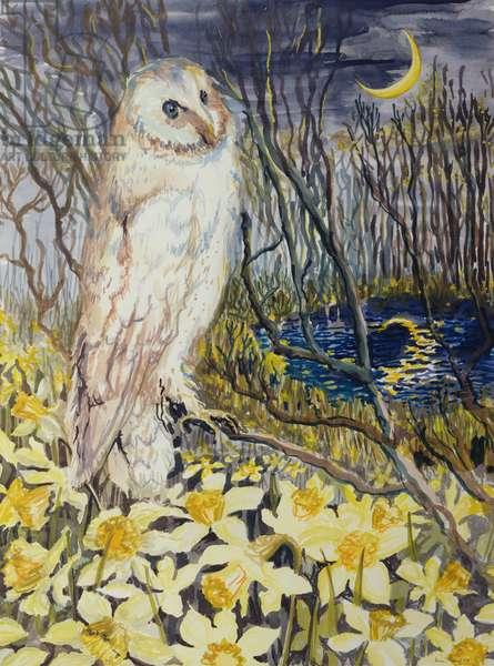 Owl (w/c on paper)