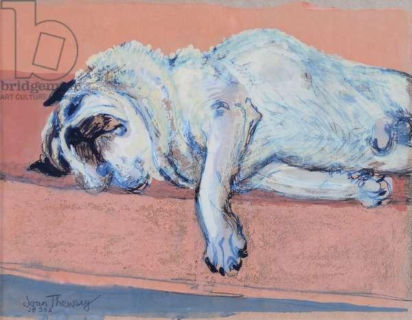 Sleeping Pug Two, 2000,(ink and gouache)