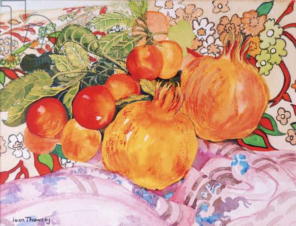 Pomegranates and Plums 2012  (w/c on handmade paper)