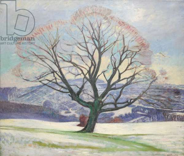 Wych Elm in Winter, 1919 (oil on canvas)