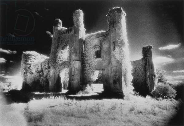 Moydrum Castle, County Westmeath, Ireland (b/w photo)