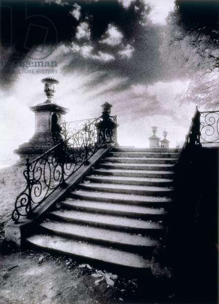 Steps, Chateau Vieux, Saint-Germain-en-Laye, Paris (b/w photo)