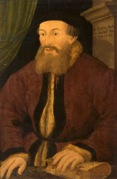Portrait of a Man, 1551 (oil on panel)