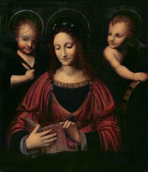 St. Catherine of Alexandria (oil on panel)