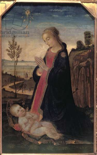 Madonna and Child in a Landscape (oil on panel)