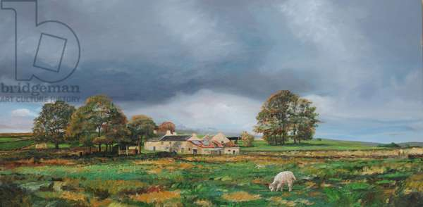 Old Farm, Monyash, Derbyshire, 2009 (oil on canvas)