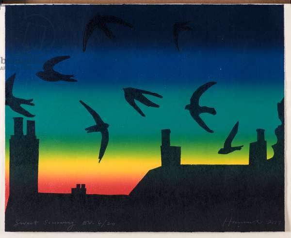 Stowey Swifts