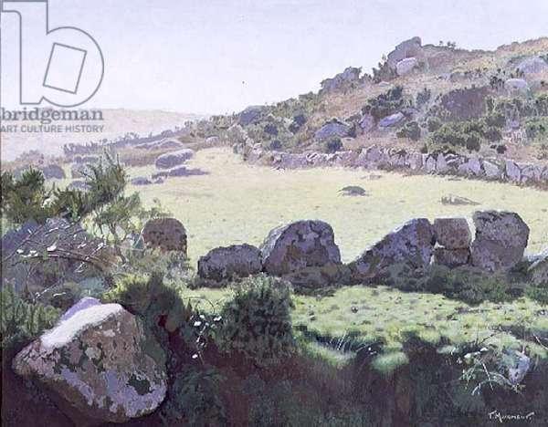 Cornish Moors (oil on canvas)