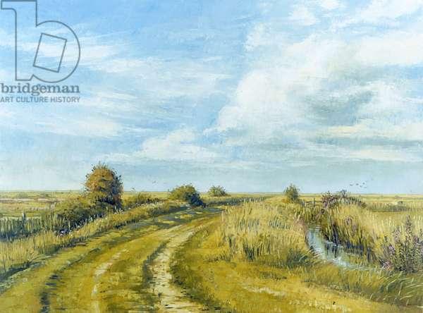 Burnham Norton Marshes, 2004 (oil on canvas)