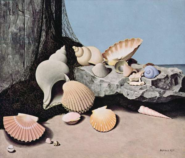 """Shells"" January, Shell Calendar 1957, 1955 (oil on canvas)"