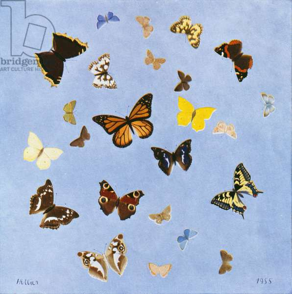 """Butterflies"" April, Shell Calendar 1957, 1955 (oil on canvas)"