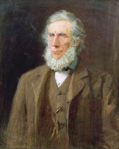Portrait of John Tyndall (1820-93) (pastel on paper)