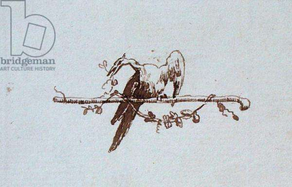 Drawing from Michael Faraday's scrapbook (pen & ink on paper)