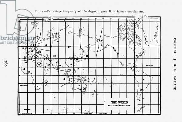 Percentage frequency of blood-group gene B in human populations, fig. 1 from 'Prehistory in the Light of Genetics' by Professor J. B. S. Haldane, 1931