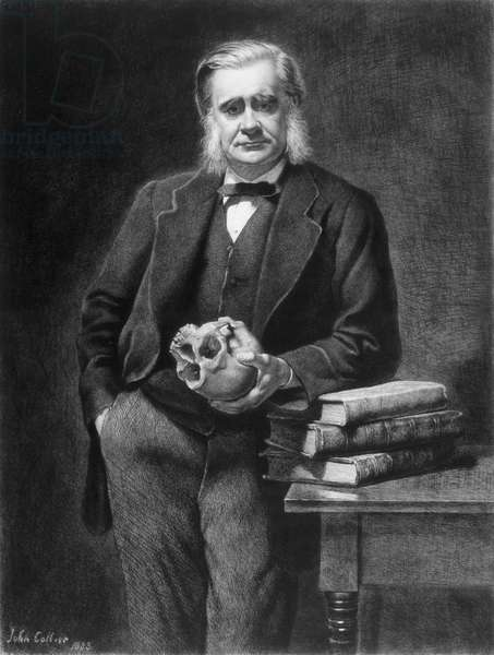 Thomas Henry Huxley (1825-95) etched by Leopold Flameng (1831-1911) 1885 (etching)