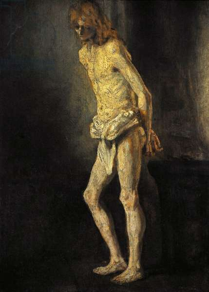 Nude Study of a Standing Youth, ca.1646, by Rembrandt van Rijn (1606-1669).
