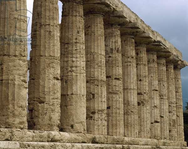 Paestum. Temple of Athena. 6th century BC. Columns. Italy.