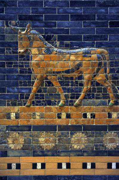 Mesopotamian art. Neo-Babylonian. Ishtar Gate, one of the eight gates of the inner wall of Babylon. Built in the year 575 B.C. during the reign of Nebuchadnezzar II (604-562 BC) using glazed blue brick with alternating rows of basrelief with dragons mushussu, also called sirrush, and aurochs. It was dedicated to the Babylonian goddess Ishtar. Rebuilt in 1930. An aurochs above a flower ribbon. Pergamon Museum. Berlin. Germany.