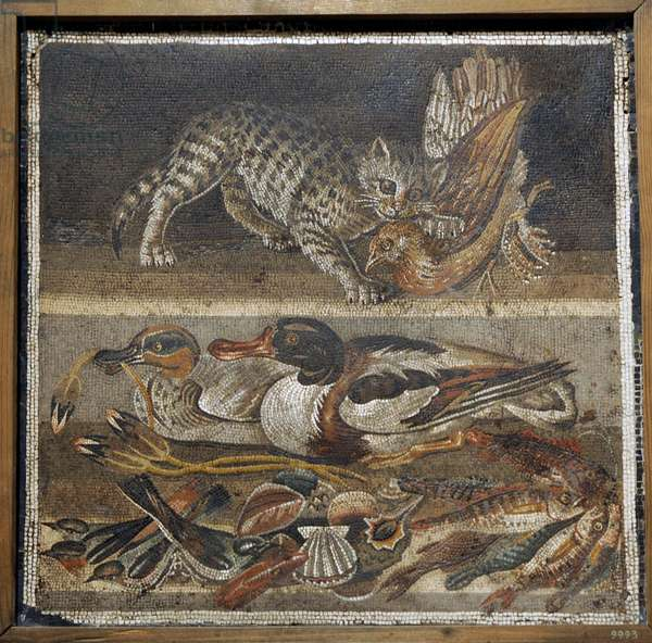 Roman mosaic, Cat with bird, ducks and sea life, Pompeii