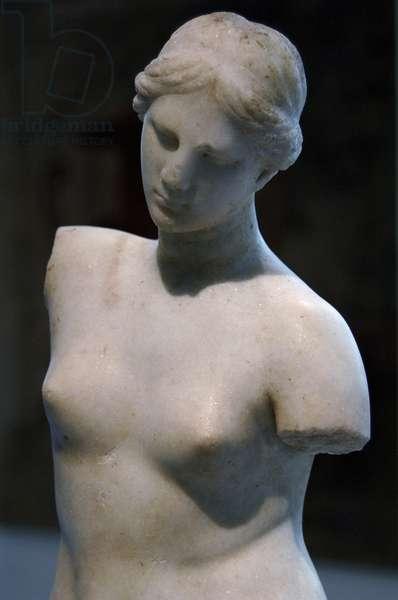 Marble statue of Aphrodite Anadyomene (hair-binding). 2nd century B.C. Metropolitan Museum of Art. New York. United States.