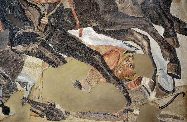 Alexander Mosaic, Battle of Issus (333 B,C,), between Alexander and Darius, Mosaic, 2nd century AD, Detail, Persian soldier