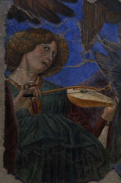 Angel playing a violin, c. 1480. Melozzo da Forli (1438-1494)