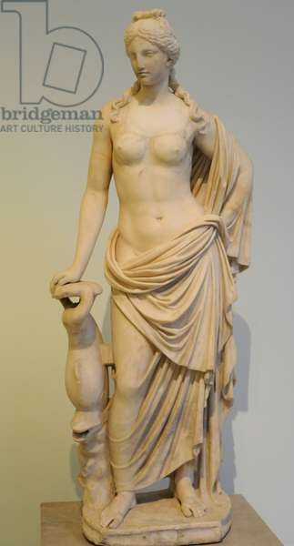 Aphorite of the Marine Venus-type, with dolphin, 2nd century AD, Copy