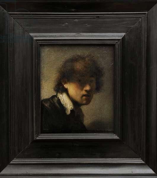 Self-portrait, 1628-1629, by Rembrandt Harmenszoon van Rijn (1606-1669)