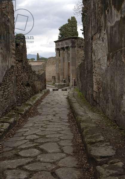 Cobbled street, Pompeii, Naples, Campania, Italy