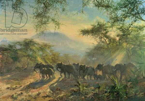 Elephant, Kilimanjaro, 1995 (oil on canvas)