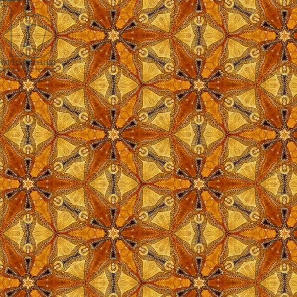 Pattern of Angels, 2008 (digital collage)