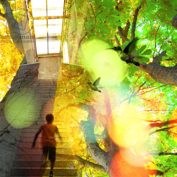 Summer House Morning, 2010, (digital collage)