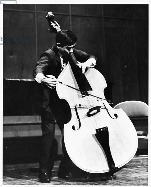 Makoto Michii, double bassist performing, c