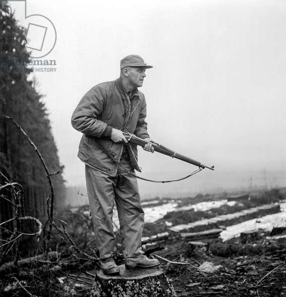Hunting in Saarland, Germany, 1947 (b/w photo)