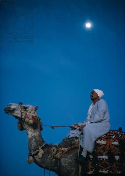 Man on a Camel (photo)