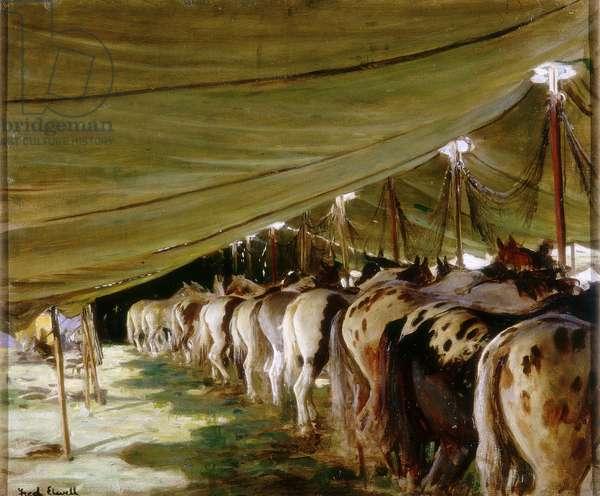 Sanger's Ring Horses (oil on canvas)