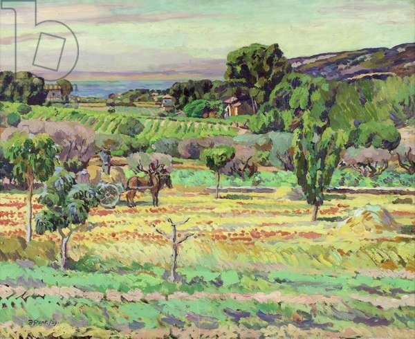 Provencal Landscape, 1929 (oil on canvas)