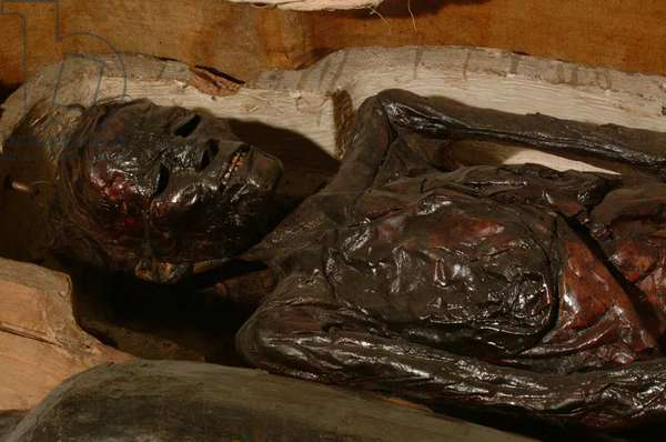 Unwrapped mummy of a middle-aged female (mixed media)