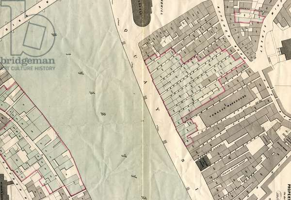 Plan of Part of Newcastle upon Tyne and Gateshead Showing the Property Destroyed by Fire 6 October 1854, c.1854 (colour litho)