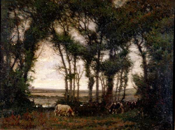 Landscape, 1905 (oil on canvas)