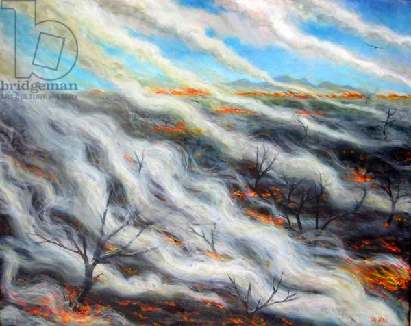 Scorched Earth, 2014, (oil on canvas)