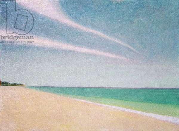 Indian Ocean, 1996 (oil on canvas)