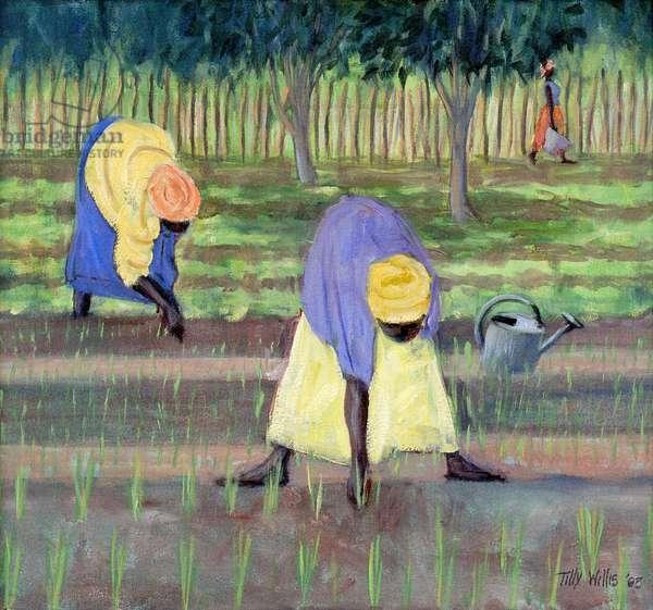 Women Gardening, 2005 (oil on canvas)