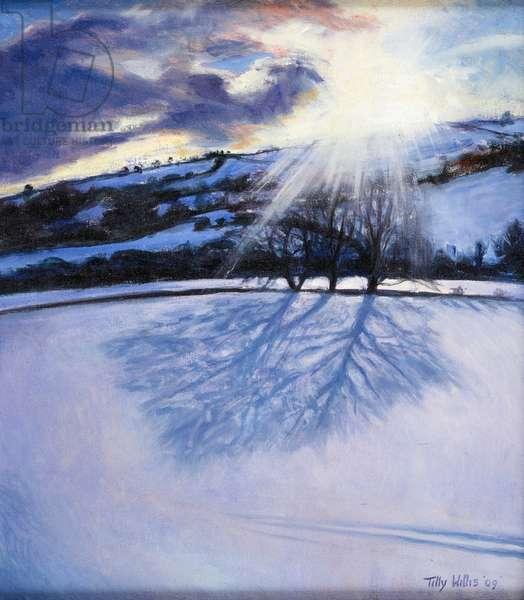 Snow Shadows, 2009 (oil on canvas)